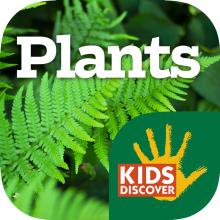 Plants for iPad