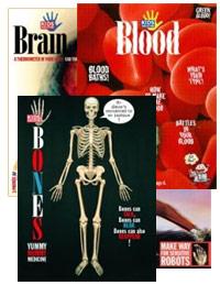 Human Body Set