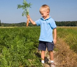 Great Plants for Kids to Grow