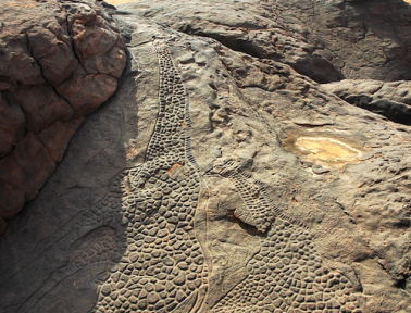 Niger's Dabous Giraffes: Sculptures From the New Stone Age